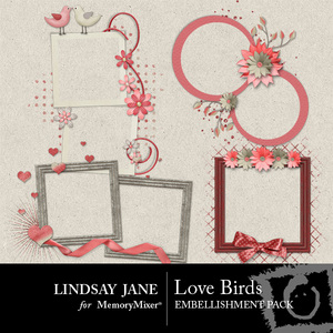 Love birds frames medium