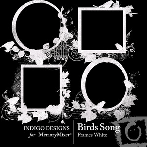Birds_song_white_frames-medium