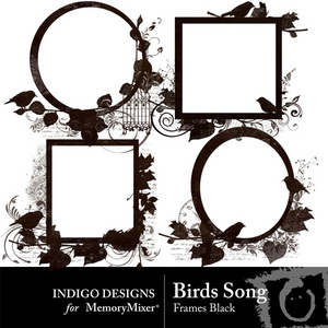 Birds song black frames medium
