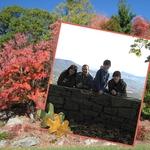 Fall p003 small