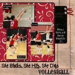 Volleyball (kimwebb5)