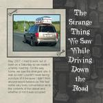 The Strange Thing We Saw (cmarcum01@aol.com)