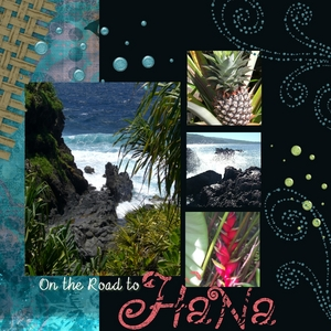 Hawaii p001 medium
