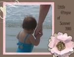 Grandchildrens Visit (BeachScraper)