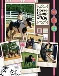 HORSE CAMP 2008 (RABIDFOX)