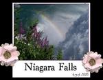 Niagara Falls (BeachScraper)