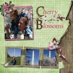 CherryBlossoms (sigmakap95)