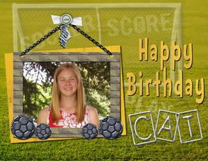 2008.02 cat card medium