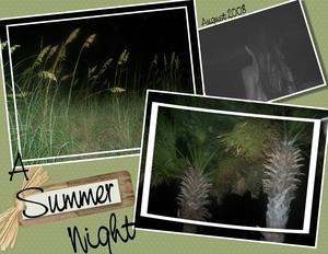 August 251 2008 p001 medium