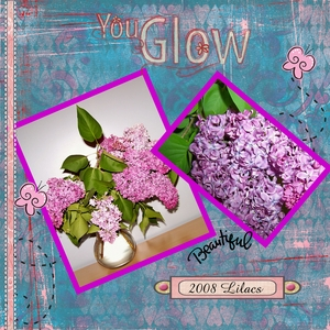 Lilacs 2008 p001 medium