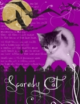 SCAREDY CAT (RABIDFOX)