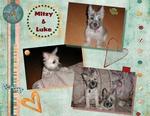 Puppies p002 small