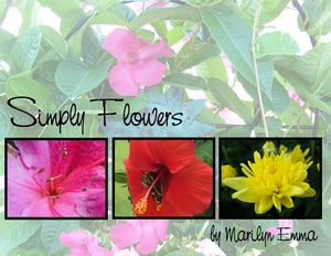Flowers_challenge-p001-medium
