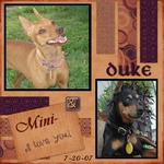 Duke And Mini Min-Pin (annirana)