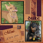 Duke And Mini Min-Pin (annirana)