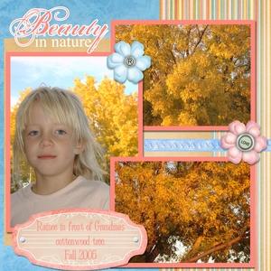 Fall_2008-p001-medium