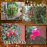 Backyard Treasures (audosborne)