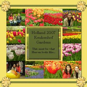 Holland p001 medium