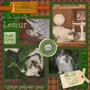 Lemur p001 medium