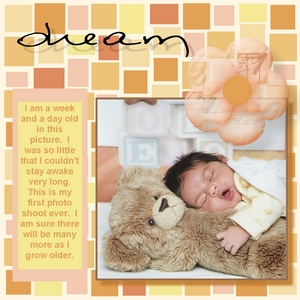Teddy bear p001 medium