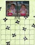 Family calendar for 2009 p006 small