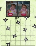 Family_calendar_for_2009-p006-small