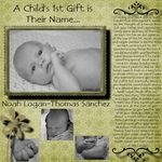 Noah logan thomas sanchez p002 small
