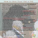 How to Give Your Cat a Pill (audosborne)