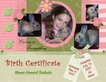 Birth Certificate (wwwdar1)
