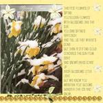 Daffodils (yorkie1257)