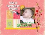 Like a Flower (weblg)