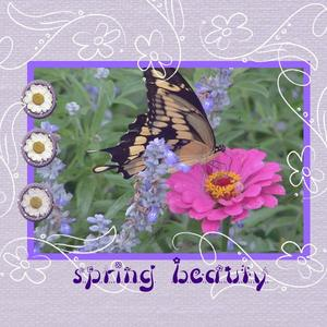Spring time p001 medium