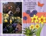 Spring has Sprung (teddiecat)