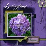 Springtime bloom (annefulling)