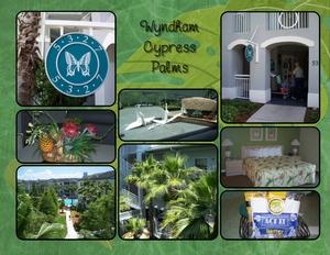 Florida wyndham palms p001 medium