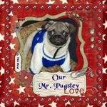Our Mr. Pugsley (Suzan1952)