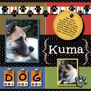 Kuma-p001-medium