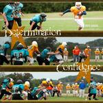 Football 2009 (audosborne)