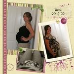 Pregnancy 2009 p005 small