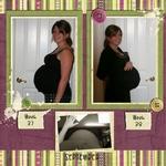 Pregnancy 2009 p006 small