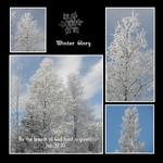 frosty gift (keli)