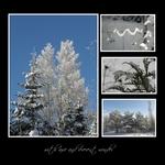 gift of frost (keli)