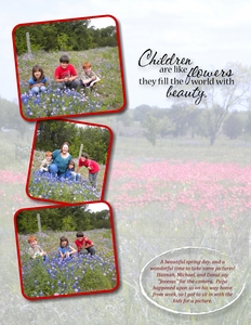 Bluebonnets p003 medium