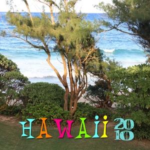 hawaii 2010 p001 medium