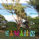 Hawaii Trip 2010 (heidinilson)