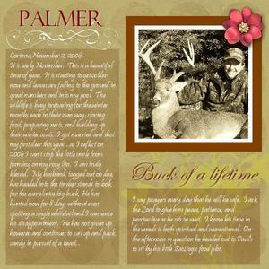 Palmer p001 medium
