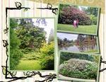 Garden-p005-small
