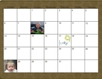 2011 albiston calendar p006 small