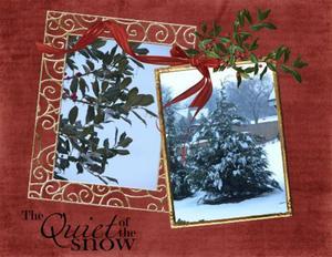 Christmas snow 2009 p003 medium