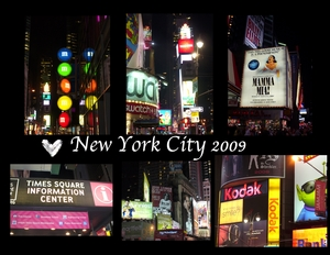 New york alex p001 medium